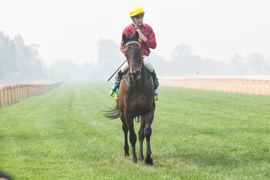 Honeywine breezes through smoke for overdue win