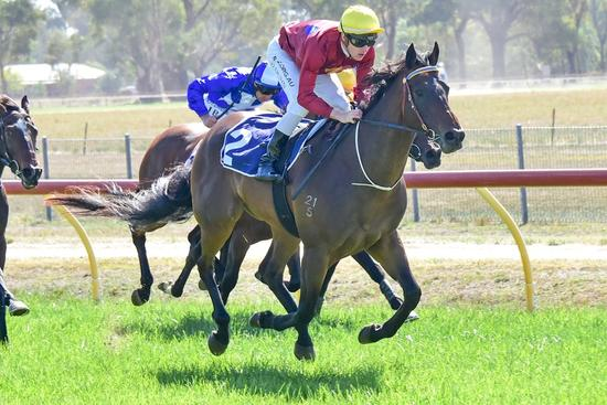 Mutanaaseq kicks off stable double with easy win