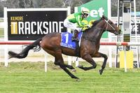 Sparkling future tipped for Diamond Luke