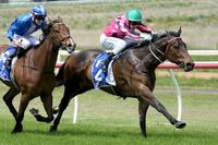 Flat Kapper toughs out maiden win