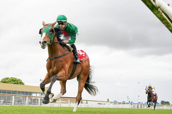 Miletus emerges as Derby hope after dominant win