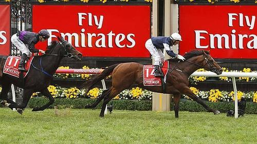Green Moon Wins Melb Cup