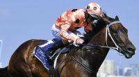 BLACK CAVIAR RETIRES WITH 25 WINS from 25 starts