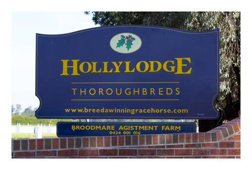 INCREASE YOUR FREQUENT FLYER POINTS AT HOLLYLODGE