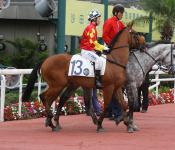 HAYMAKER WINS IN HONG KONG