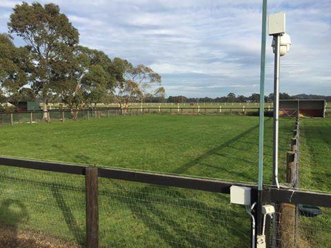 Foaling Yards Ready for 2017 at Hollylodge