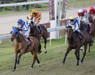 Stage Shaker wins Cairns Cup.