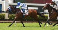 Burleigh Bullet wins on Saturday at Doomben