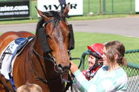 Sadia delights owners with first-up win in symbolic racing colours