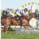 Getting right in 'The Thick Of It' at Bendigo