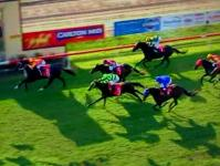 Cracker Night Brings Up A Stable Double For Owners And Trainer