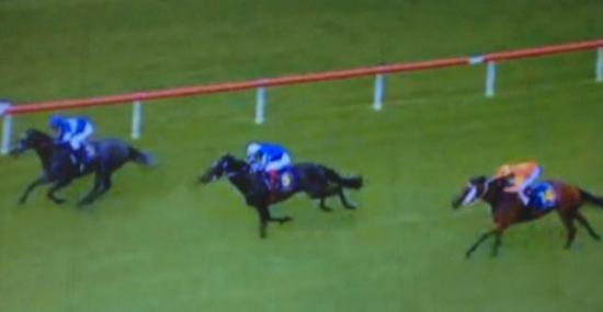 Stradance Returns With A Third At Taree