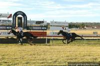 Newcomer To The Stable Storm Ahead To Compete In Wauchope Cup