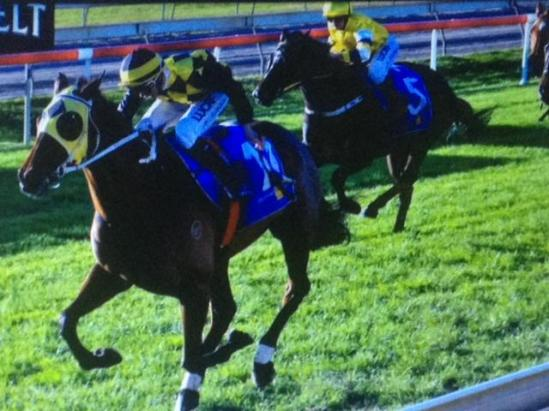 Storm Ahead Hoping To Strike At Canterbury