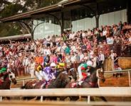 Three Stable Runners To Compete At Port On Saturday