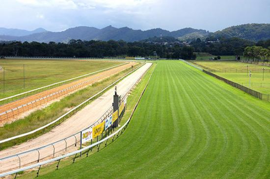 Marc Quinn To Supply 1 Runner At Coffs On Sunday