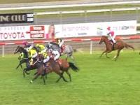 Great Effort By Towkash To Finish Third At Coffs Harbour