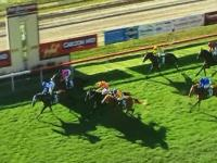 Stable Runners Finish 1st & 3rd In Race 6 At Port