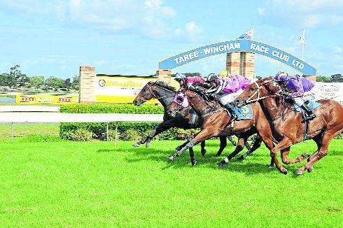 Towkash To Compete At Taree- Wingham On Monday