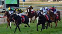 Two Stable Runners To Compete At Port On Saturday