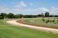 Stable Runners To Compete At Grafton On Monday