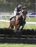 TWO JUMPERS HEAD TO SA GRAND NATIONAL