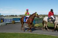 VEGAS BOUND STREETS HIS RIVALS