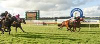 SPLASHETTE WINS AT WARRNAMBOOL