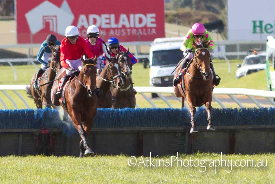 COUGAR EXPRESS WINS IN S.A.