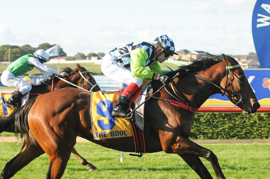 ORACABESSA WINS ON DEBUT FOR STABLE