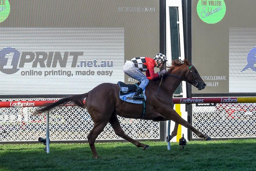 TRAP FOR FOOLS WINS AT THE VALLEY