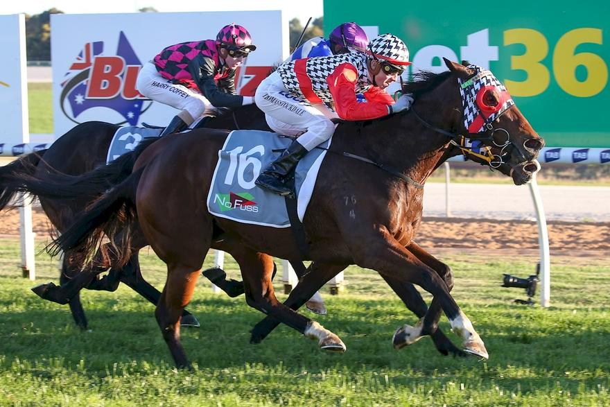 NORTHERN RIVER WINS AT SWAN HILL