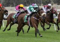 Warrnambool favourite a maiden no more