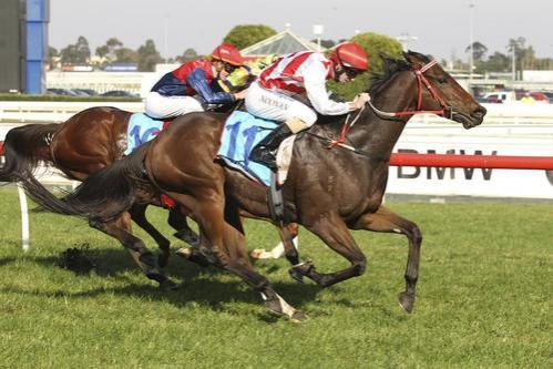 Man did he let down at Caulfield!