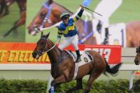 A Fair performance at Sha Tin