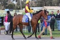 Cup Carnival beckons for Flying filly