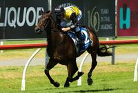 Heart lies with Magic Millions favourite Jonker