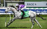 Greyworm goes back to back at Randwick