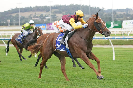 Sparks into action at Pakenham