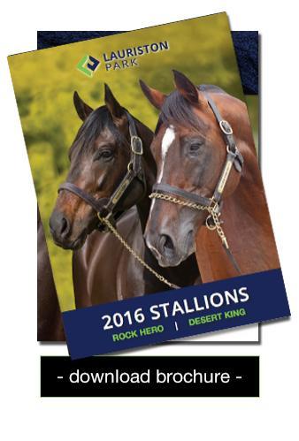 2016 Stallion brochure for Lauriston Park