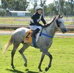 Miss Miles Wins Champ Resources Maiden Handicap Rockhampton
