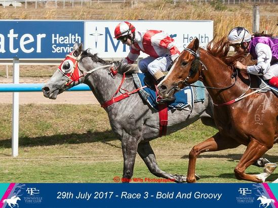 Bold And Groovy Wins Wilson, Ryan, Grose Lawyers Up & Coming Stayers at Townsville