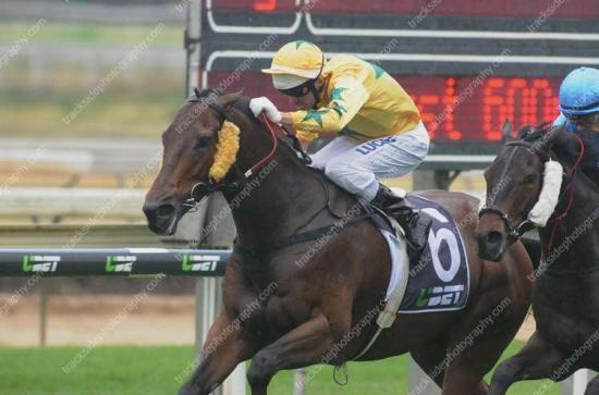 Mister Booze wins for new stable