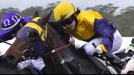 Alassak wins on Ipswich Cup Day