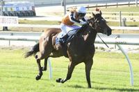 Northkape Flies At Ballarat