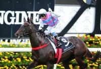 Two Blue to be given Group One chance