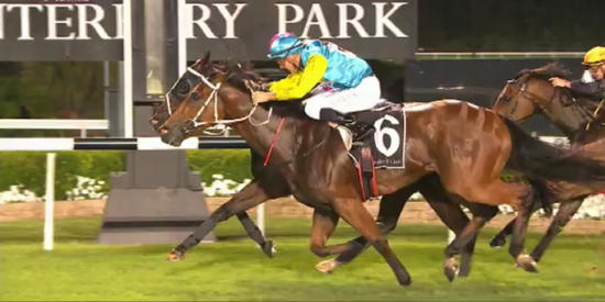 Niccobelle Just Misses At Canterbury Under Lights