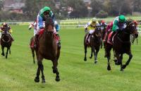 2016 Australian Steeplechase - Angelology does it comfortably