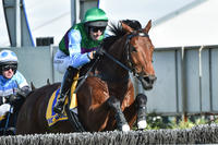Zed Em wins a thrilling Brierly Steeplechase