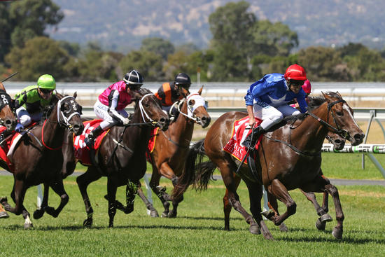 Magic Millions Two -year old Classic to Payne & Zizzis